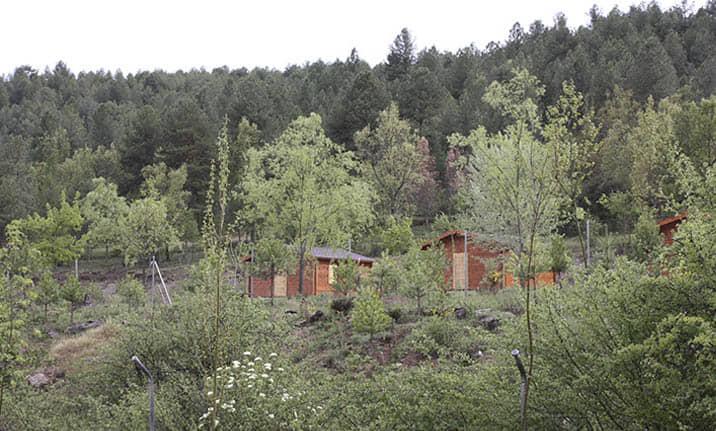 Entorno natural del albergue en la serrania de Cuenca
