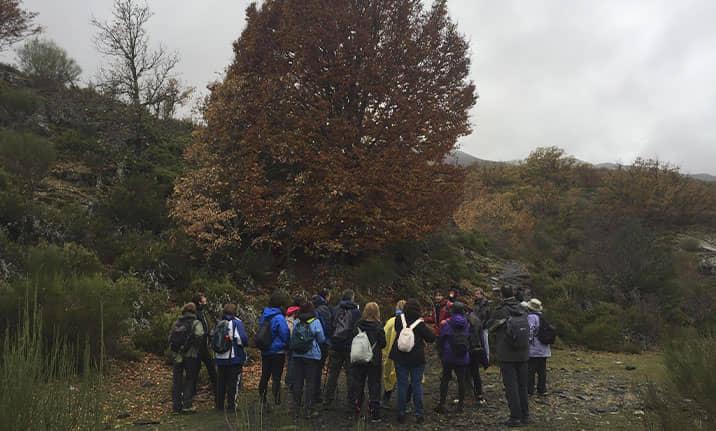 Curso de formación, senderismo en la sierra de Madrid